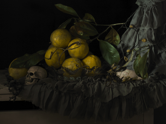 Still Life with Seaweed and Lemons 2011