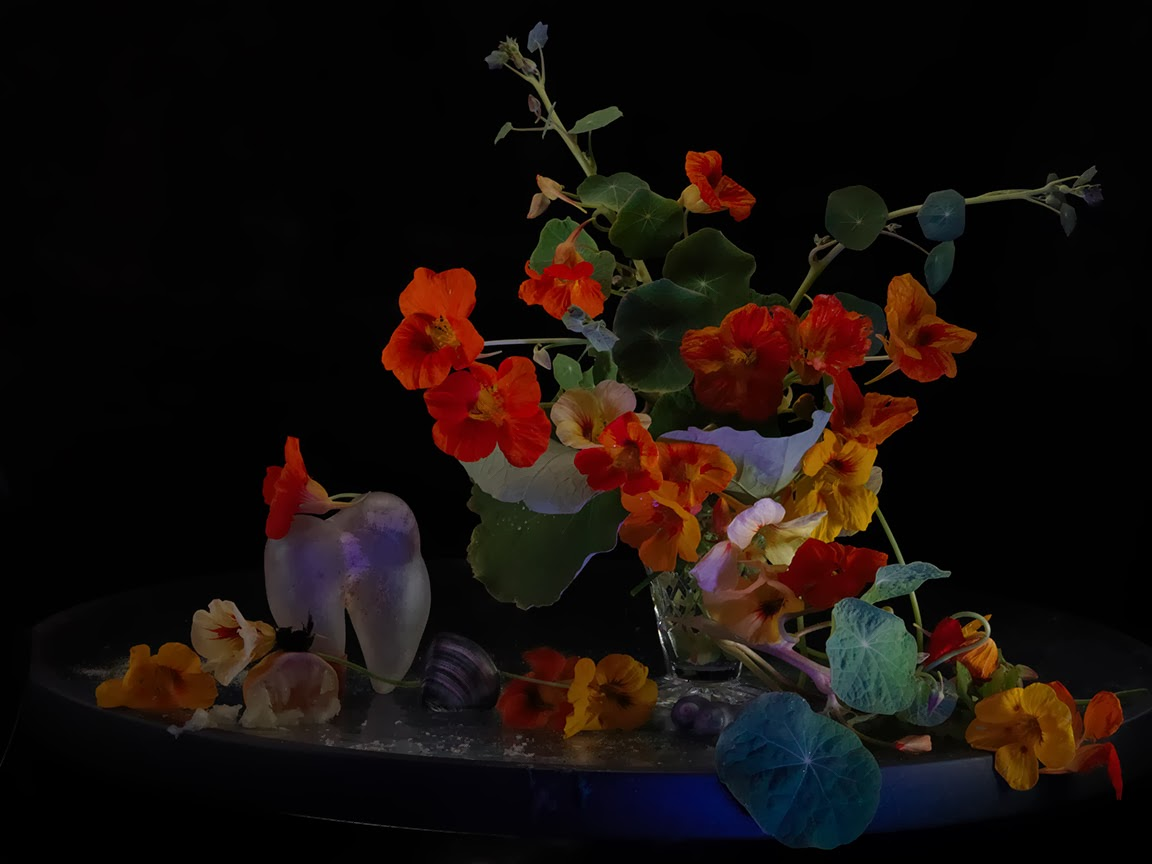Still life with Nasturtiums in a Crystal vase and an Unknown Organic Object, Ripiro 2013