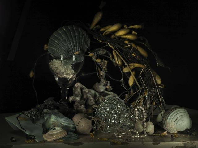 Still Life with Pearls and Whangai Karoro 2011.jpeg
