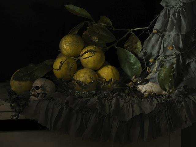 Still life with Seaweed and Lemons 2011.jpeg