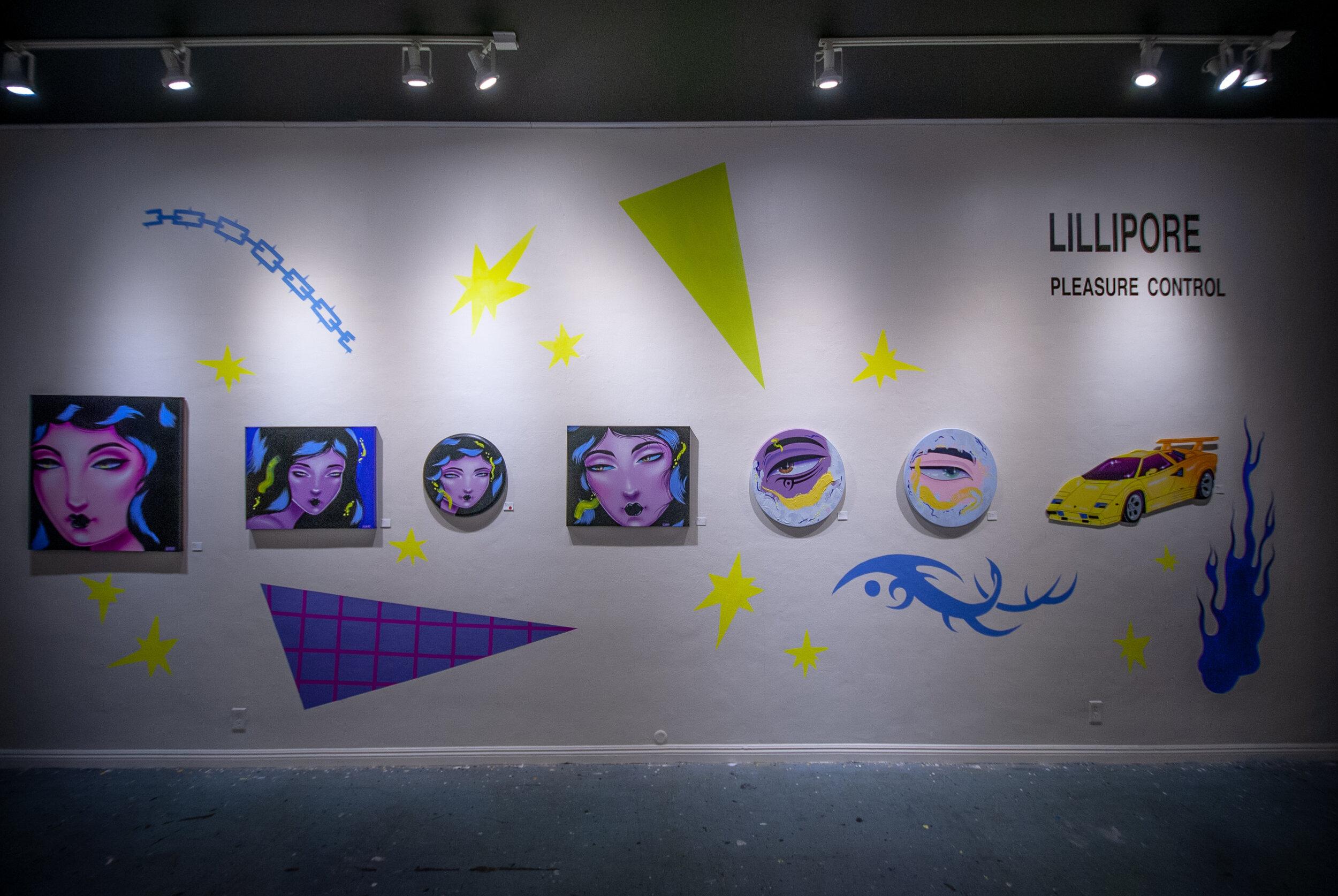 Lillipore Pleasure Control - Install Shot4.jpg