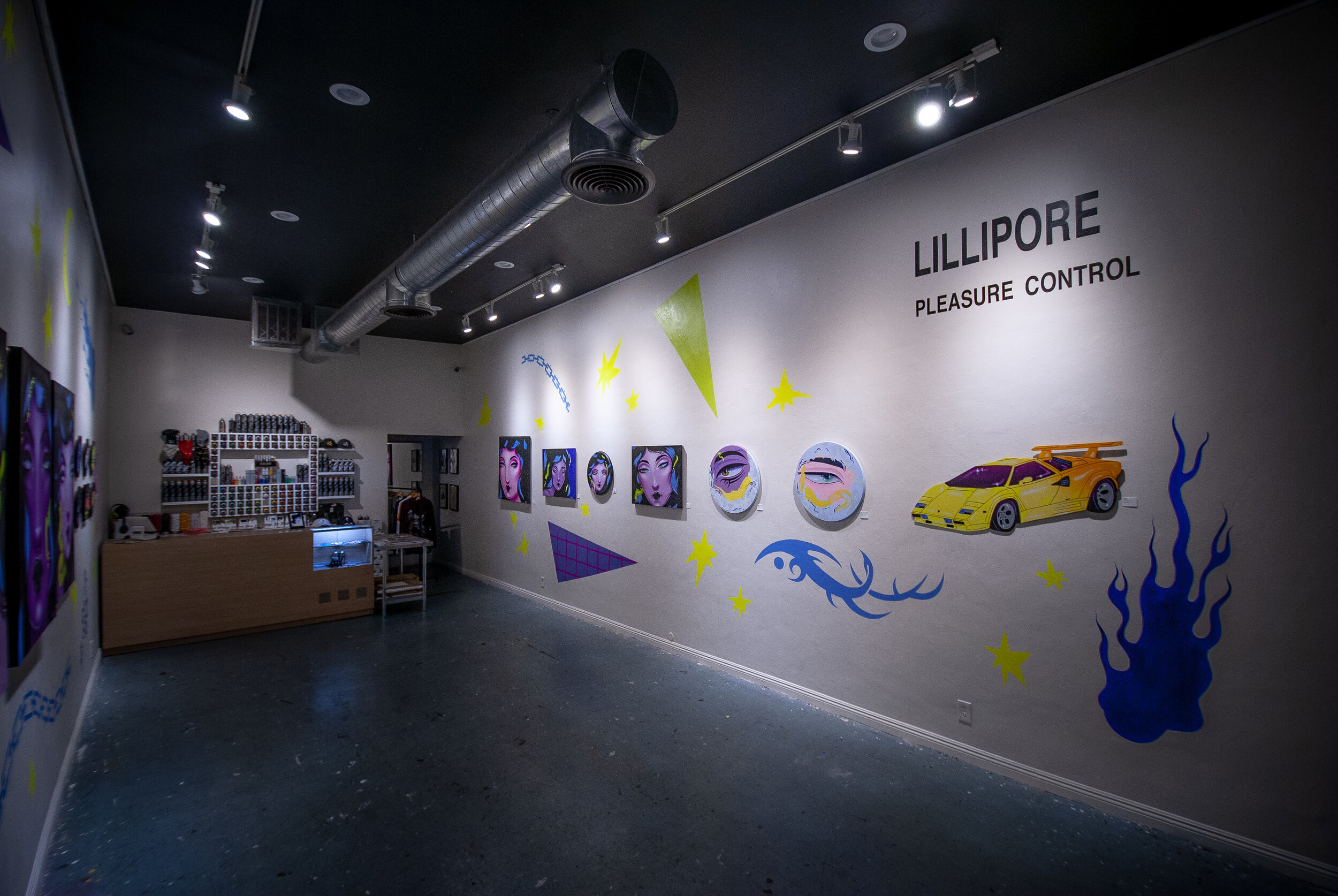 Lillipore Pleasure Control - Install Shot3.jpg