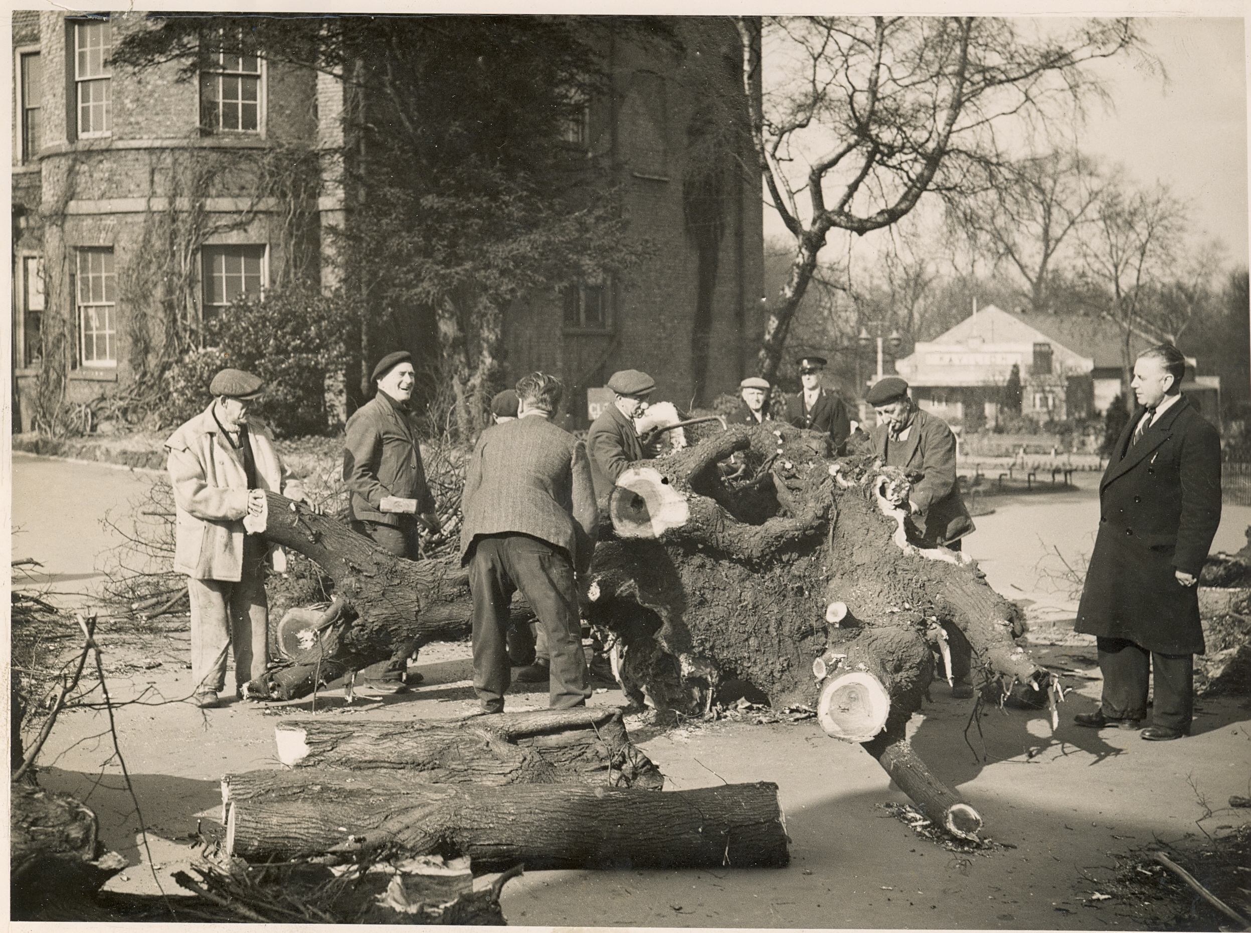 Whilst leading workshops for the Lloyd Park Heritage group in Walthamstow we re-anacted several pictures from the archive.    This image was taken following gale-damage in 1949. You can see below a report from the time and our re-anactment for the 21st century: notice how the Health and Safety act has effected working conditions. Also, mixed gender and more multi-cultural working habits as well as a strict no-smoking policy have changed the workplace significantly in 65 years.    IMAGE CREDIT: Vestry House Museum, London Borough of Waltham Forest