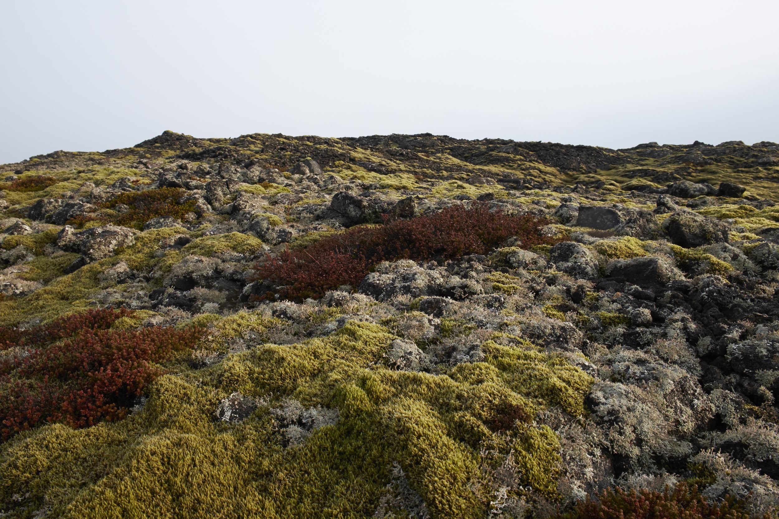 Lunar landscapes in Iceland