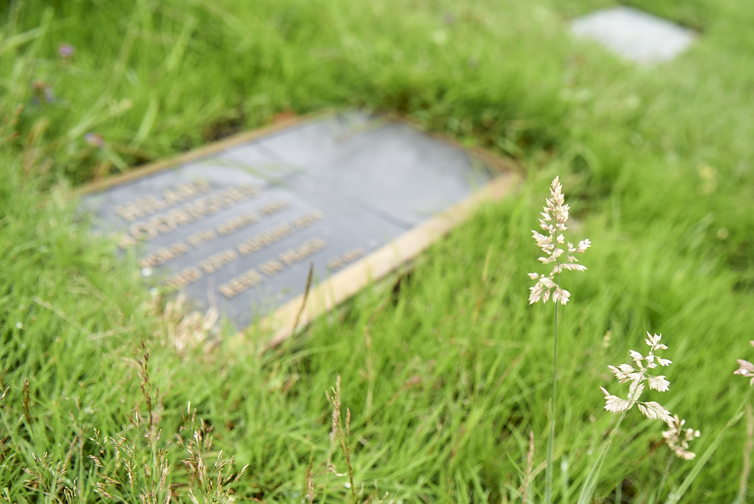 Lawn-styled cemetery where only flat memorial plaques are allowed