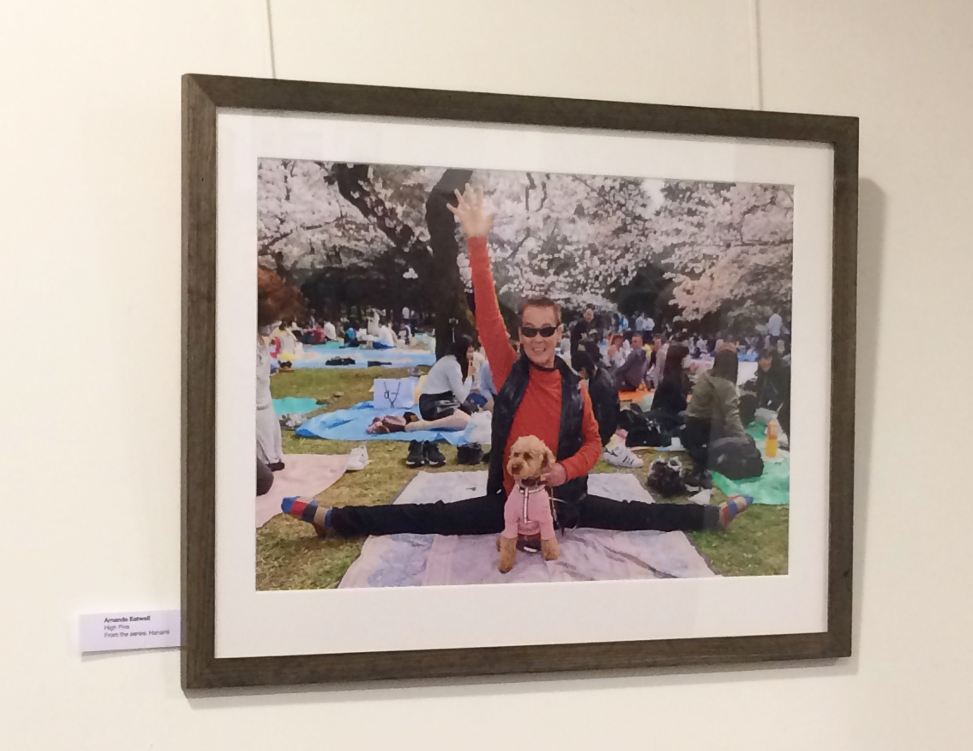 """High Five!   From the series Hanami - shot on location in Tokyo earlier this year as people celebrated the arrival of the Cherry Blossom.  A very popular image, and one that is sure to bring a smile to your face every day!   Frame Size approx. 21 x 17""""    COST £55.00"""