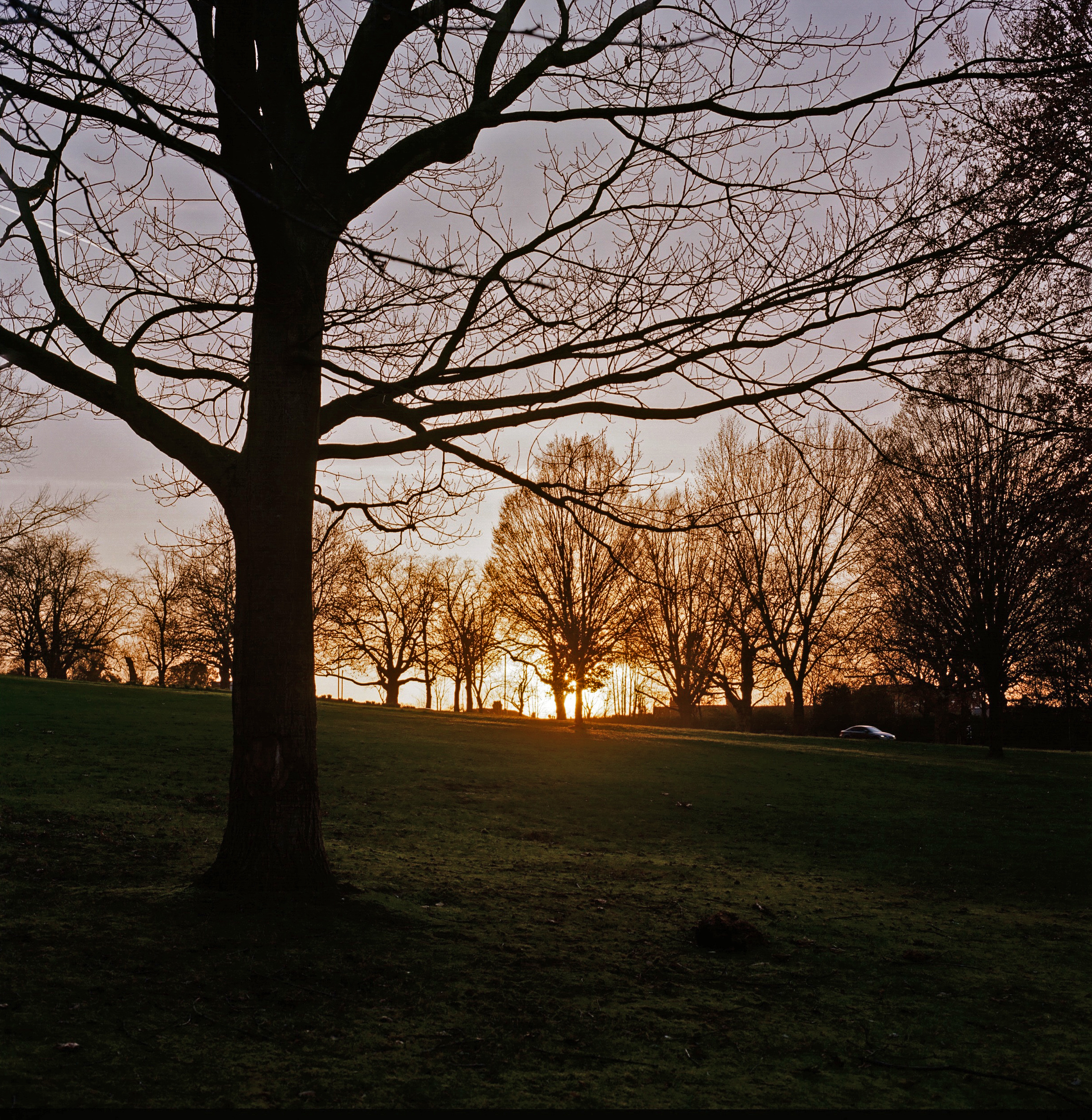 Hasselblad: A sunset shot in Finsbury Park.