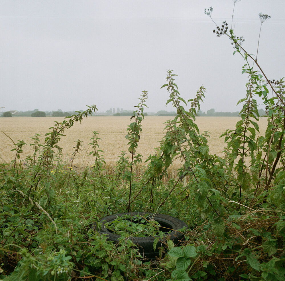 What happens next: Will the nettles die, will somebody cut them back, will the tyre perish over years or will somebody collect it as part of a mission to  keep Britain tidy ?