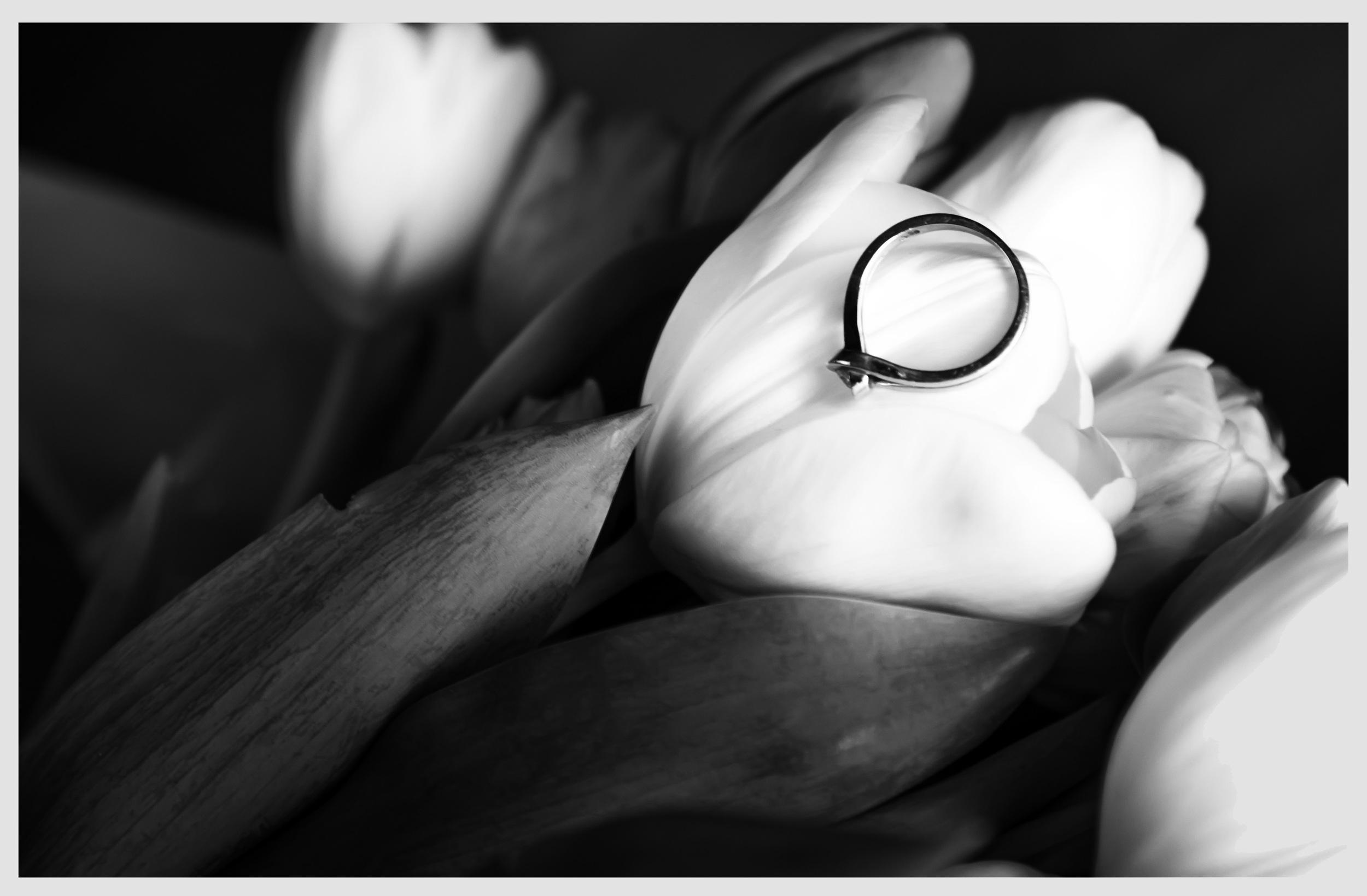 Black & White 3 .jpg