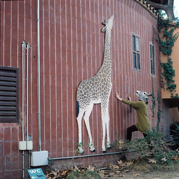 000004 jirafa zoo web.jpg