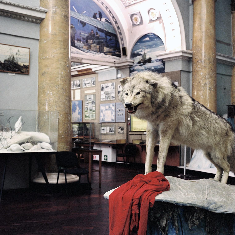000005 museo de la antartida2.jpg
