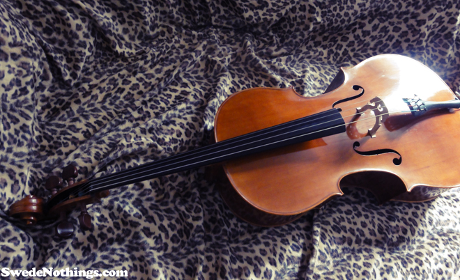 Where To Buy A Good Cello In Amsterdam The Wong Janice Music