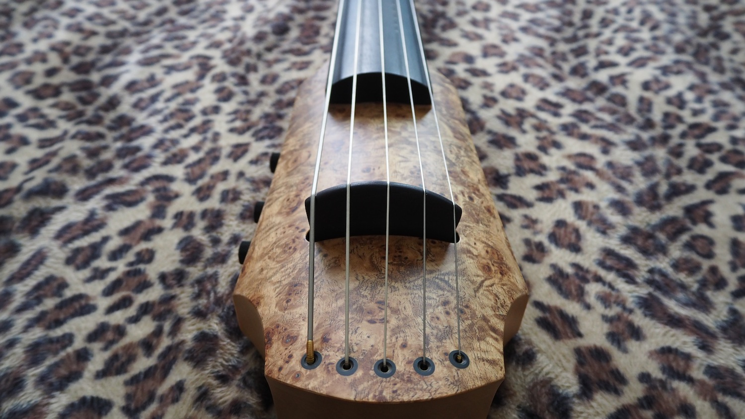 NS-design-CR-series-CR5P-electric-5-string-cello-poplar-burl-bottom-view-The-Wong-Janice-music-producer-cellist-Amsterdam.JPG