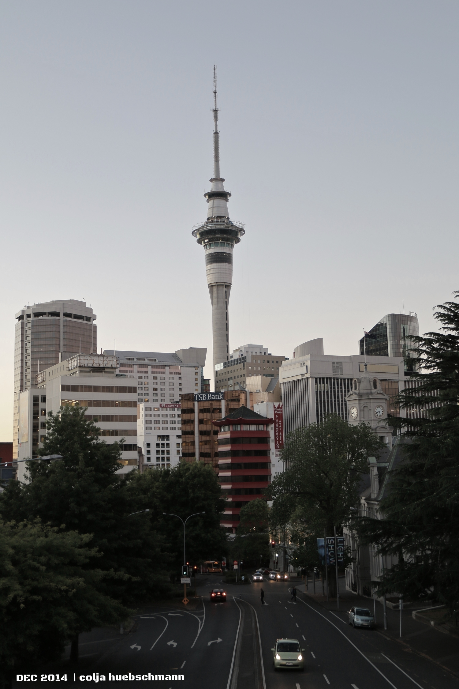 Sky Tower (View from wellesly st e)