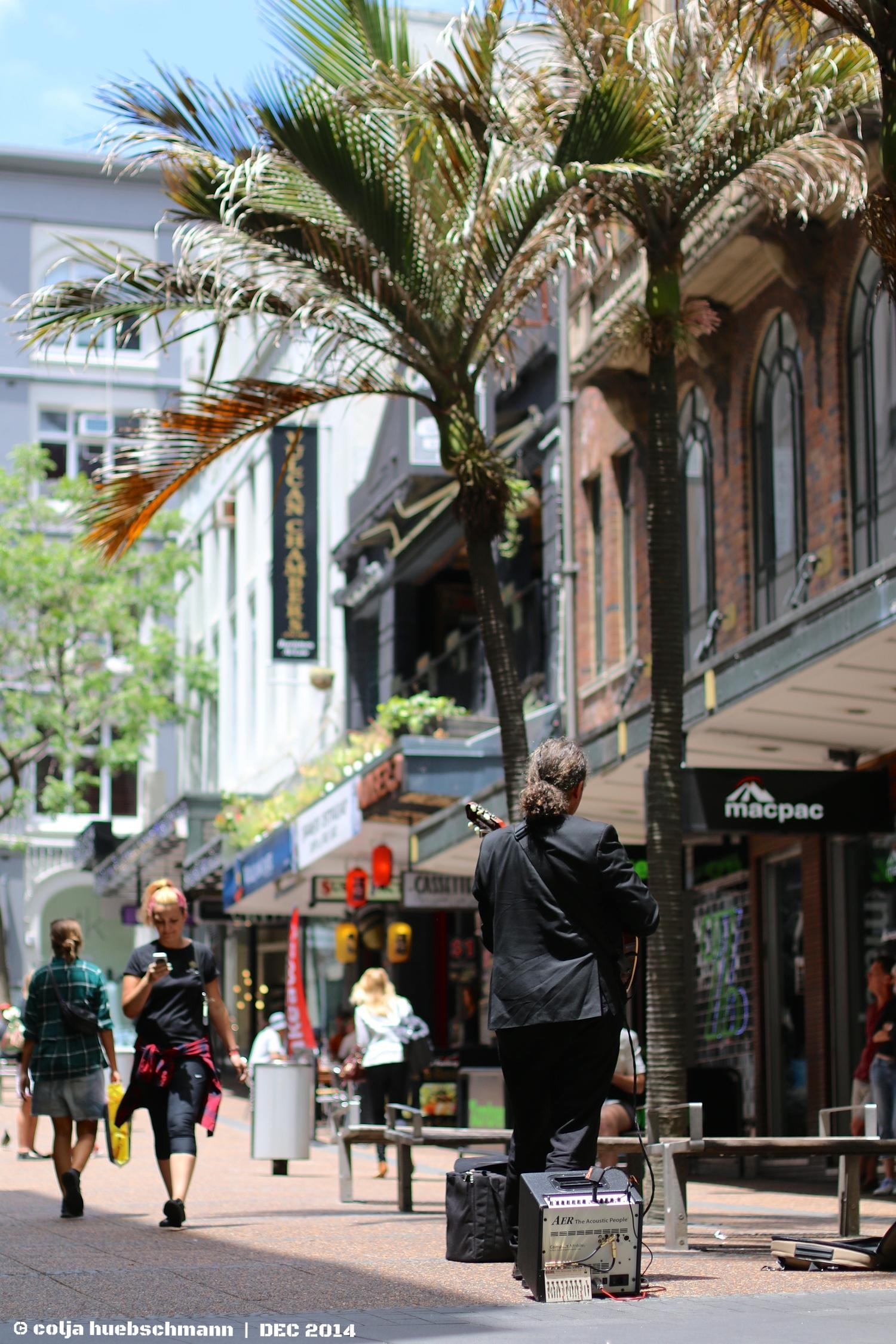 Street musician - vulcan ln.