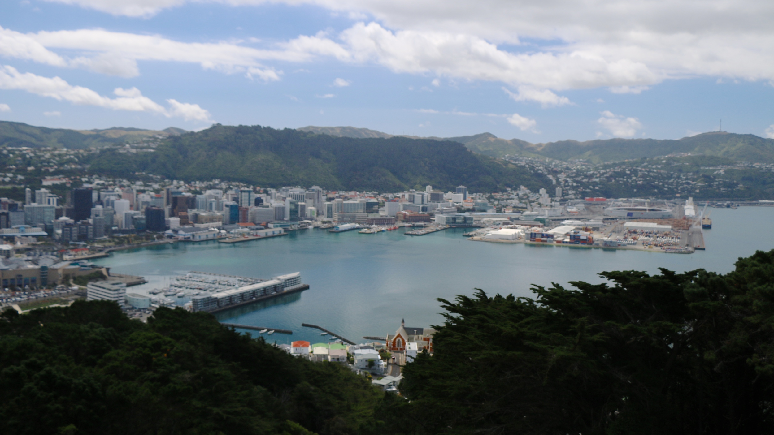 Wellington - view from mt victoria