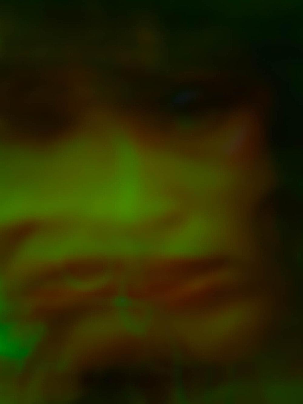 LOOK02_0006.jpg