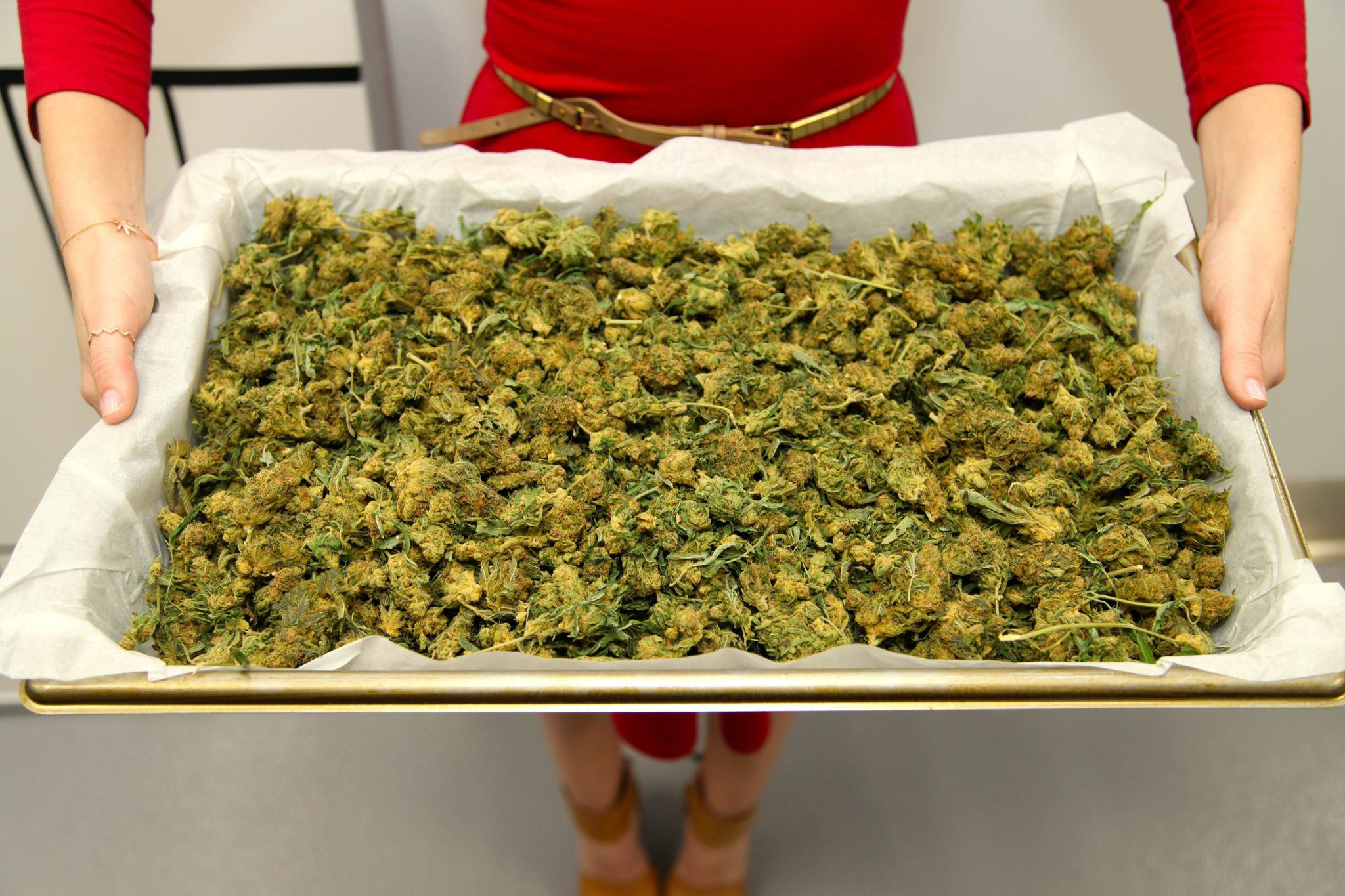 Founder & CEO, Julie Berliner, holds tray of decarboxylated cannabis buds.