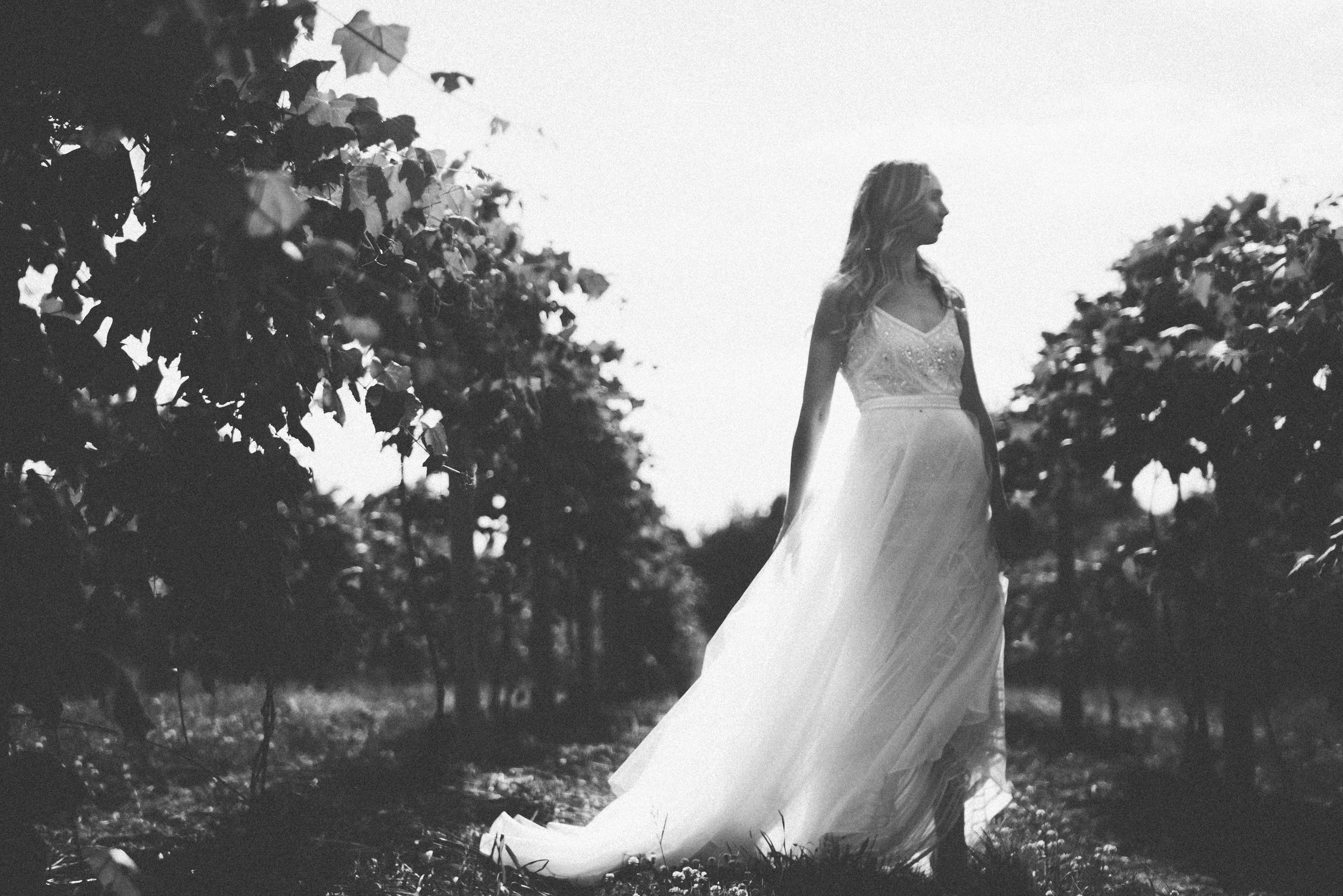 michigan-wedding-photography-videography-videographer-cinematographer-cinematographers-cinematography-award-winning-chicago