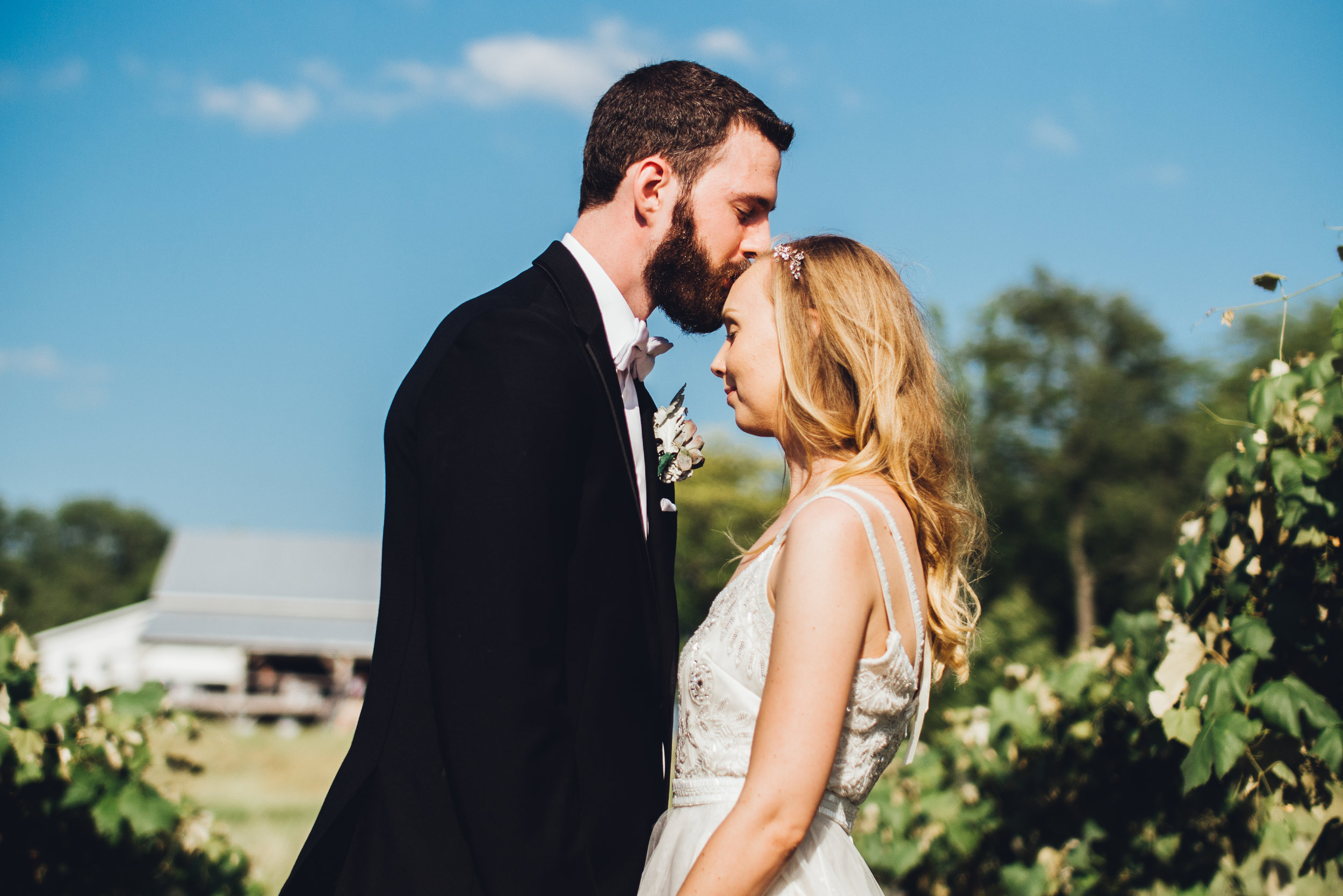 jessica-david-ledwidge-wedding-photos-videos-video-award-winning-michigan-videography-videographers-videographer-photographer-photography-photographers-cinema