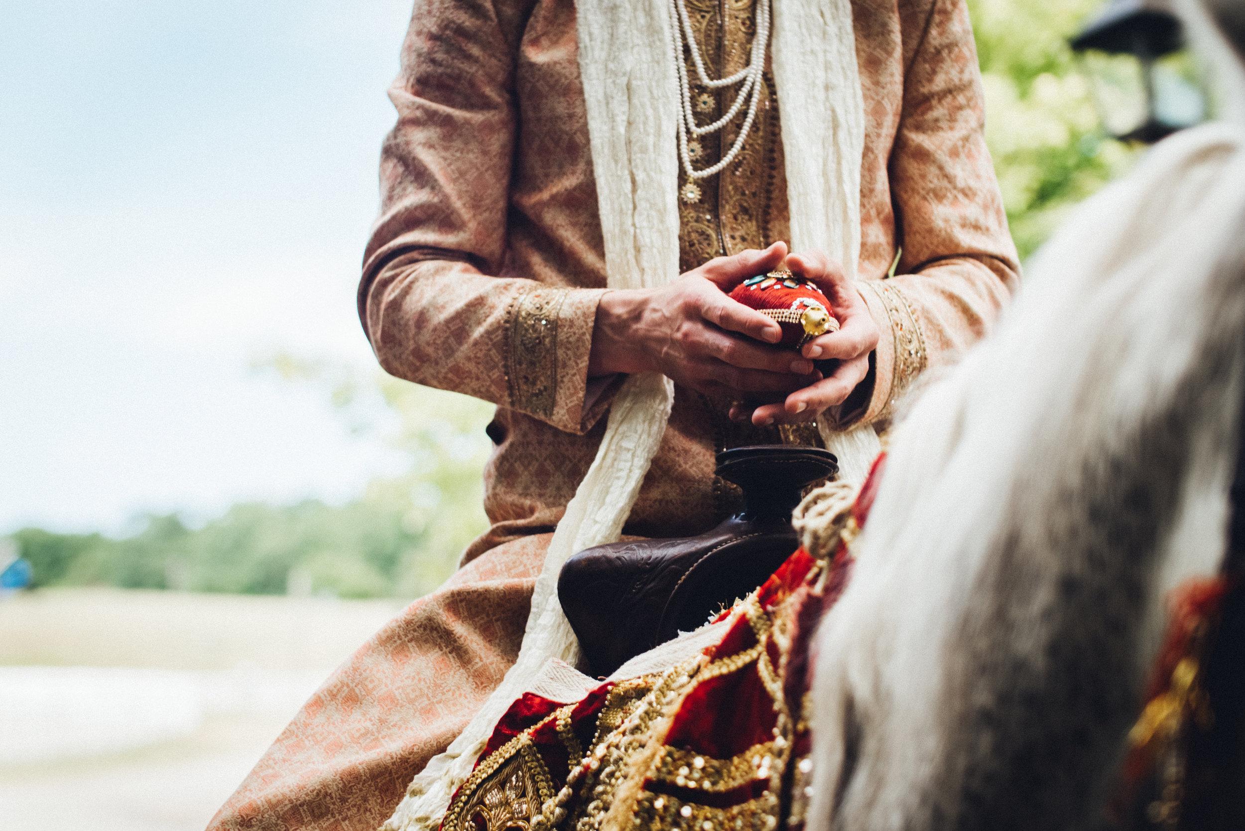 avani-khristoph-becker-bhatt-wedding-videography-photography-cinematography-shadow-shine-pictures-award-winning-michigan-detorit