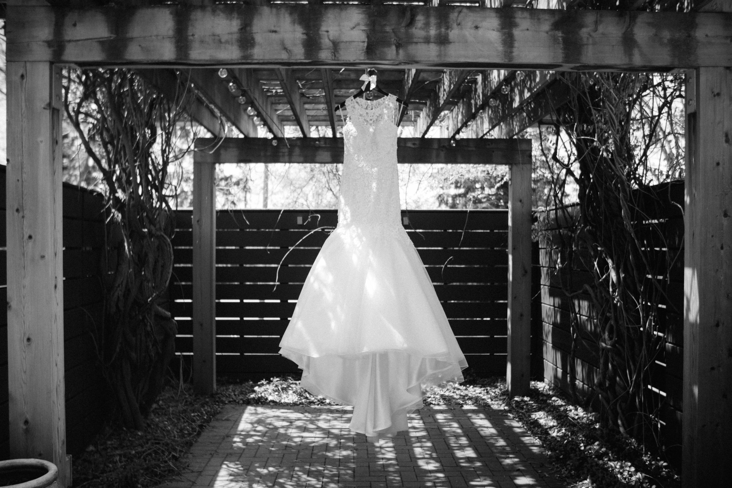 ShadowShinePictures-VeronicaToddKorthals-Ann-Arbor-Wedding-Photography-6.jpg