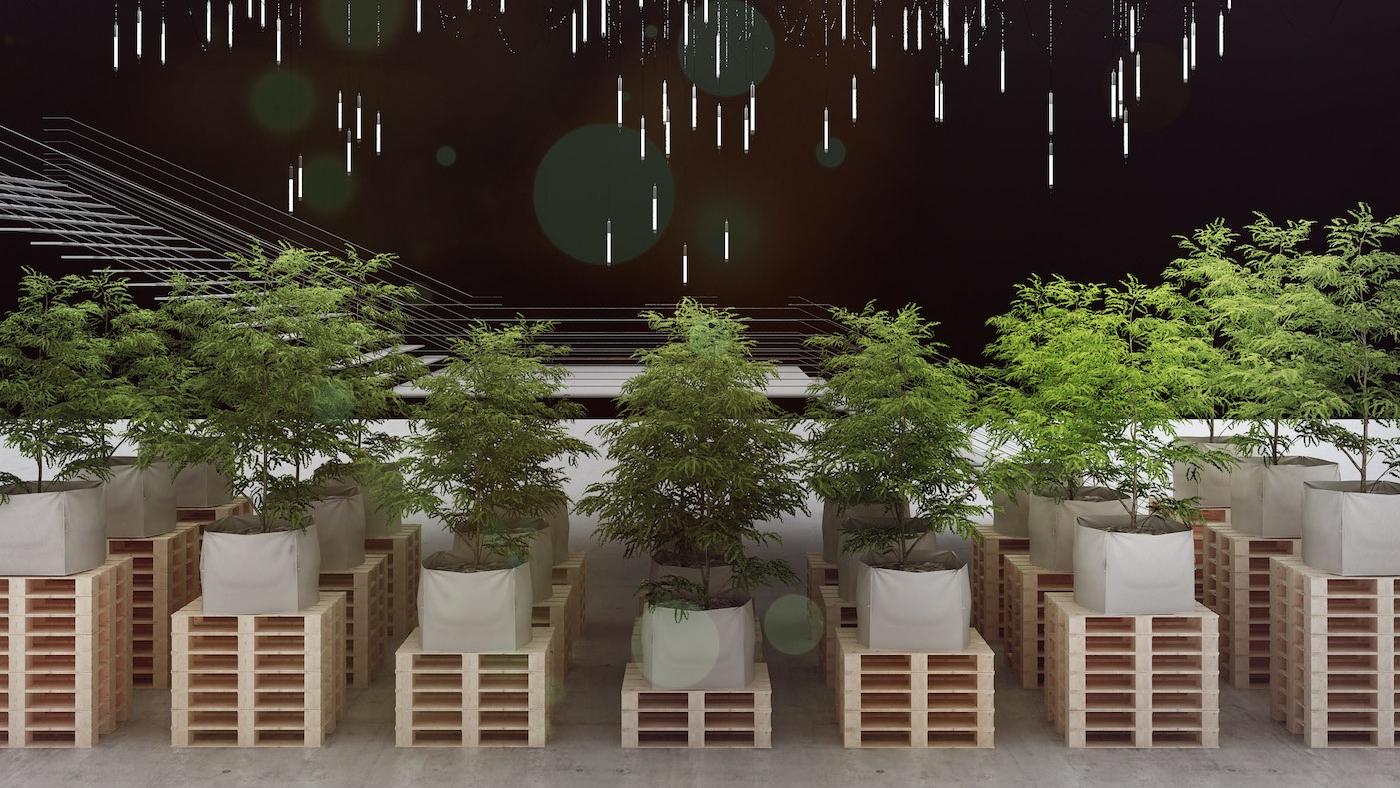 During the Paris Design Week, the Cité de la Mode et du Design is shining a light on botanical design with Christophe Ponceau's installation: The Bulk Garden/ Le Jardin en Stock.