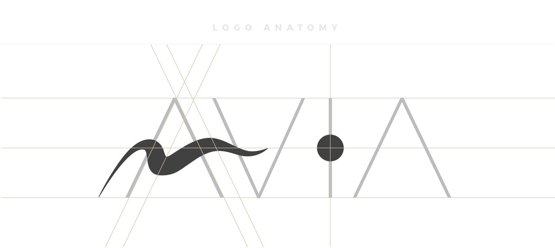 Logo Anatomy