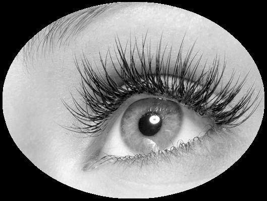 Eyelashes-Round.png