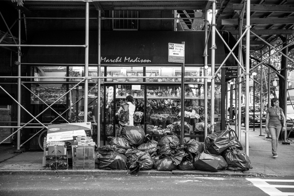 ERINLITTLE_NYC-1174.jpg
