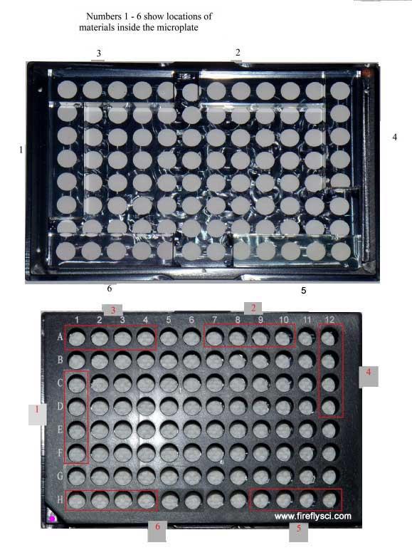 flourescence calibration 96well plate