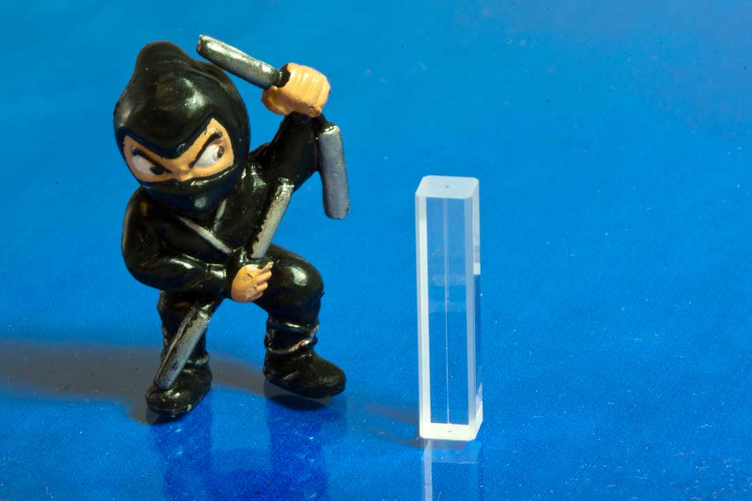 ninja-with-cell.jpg