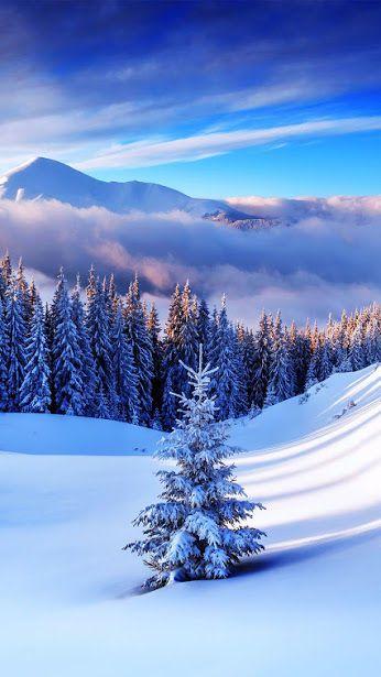 4b23665f9d0fcccb5567d8b5dc09a20b--winter-nature-winter-snow.jpg