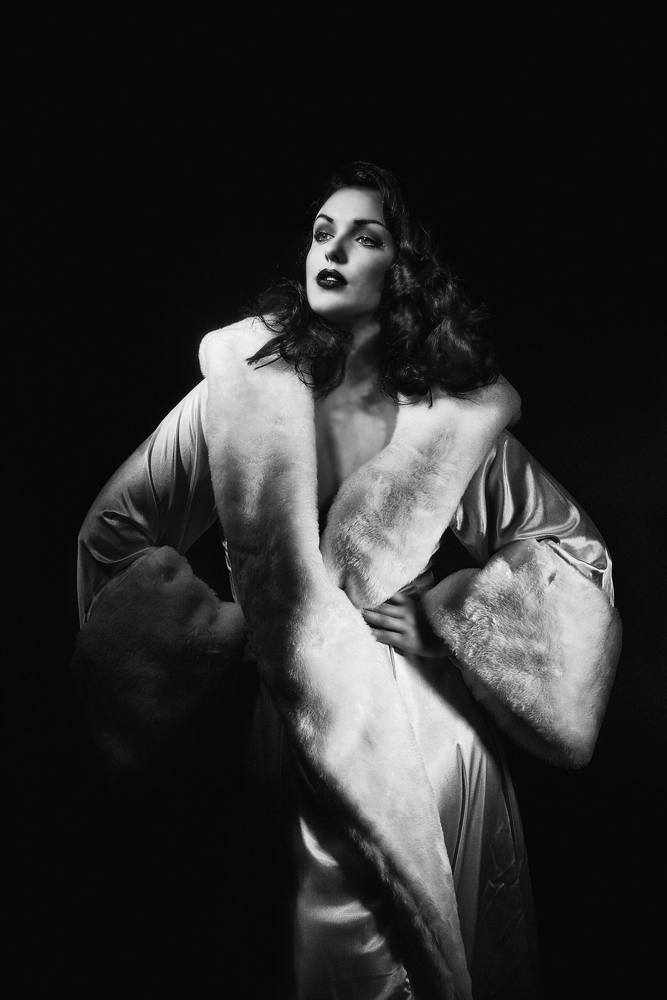 Audrey_retro_fur dressLOW.jpg