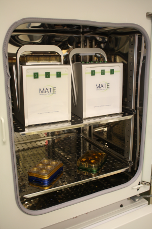 Fig 2: Two MATE boxes on the upper shelve and multiple stack-able trays on the lower shelve of a standard size incubator.