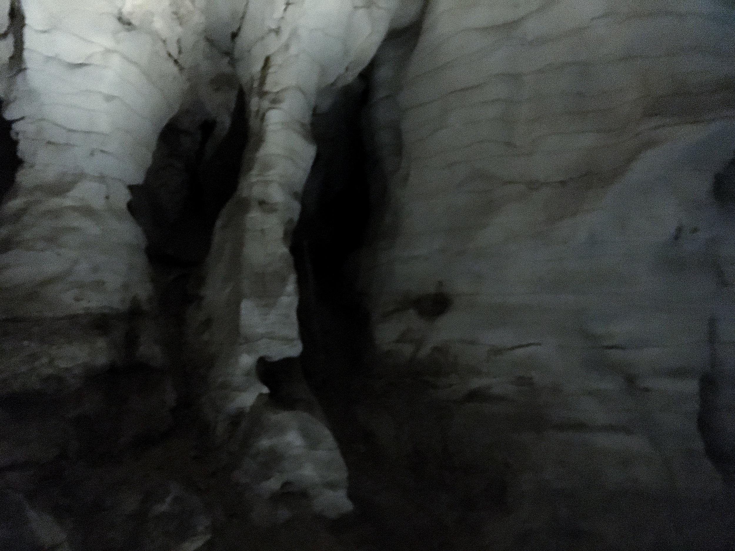 Waitomo Caves 1.jpg