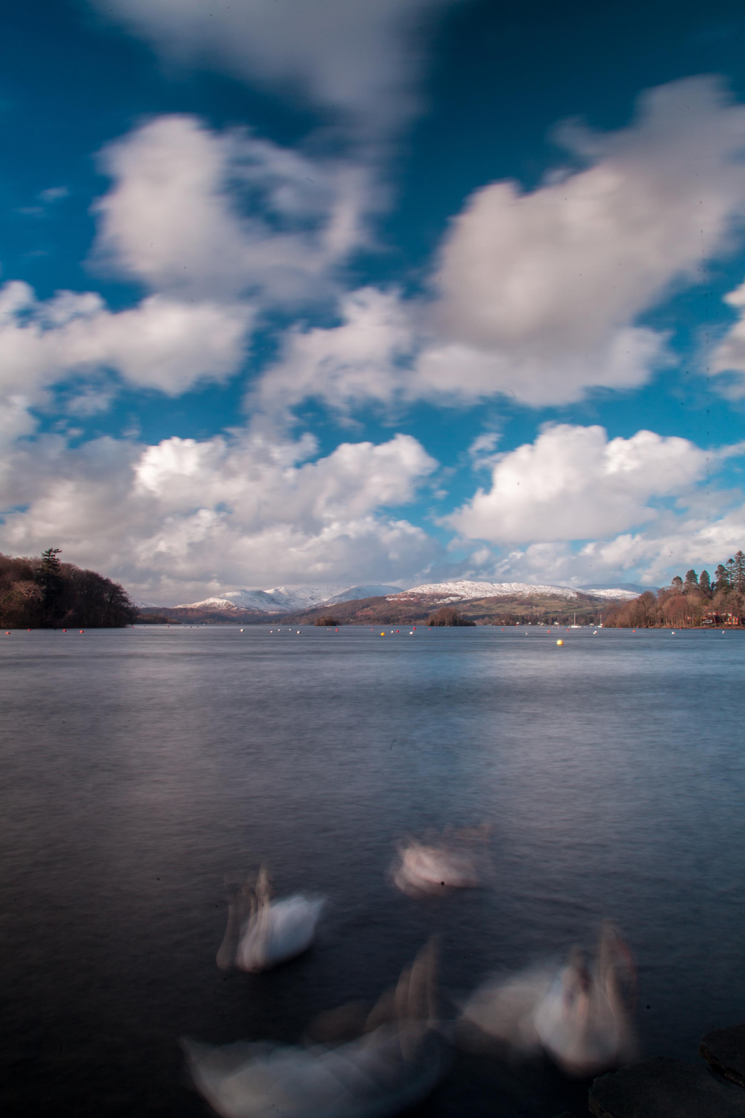 Swans long exposure - Lake Windermere.