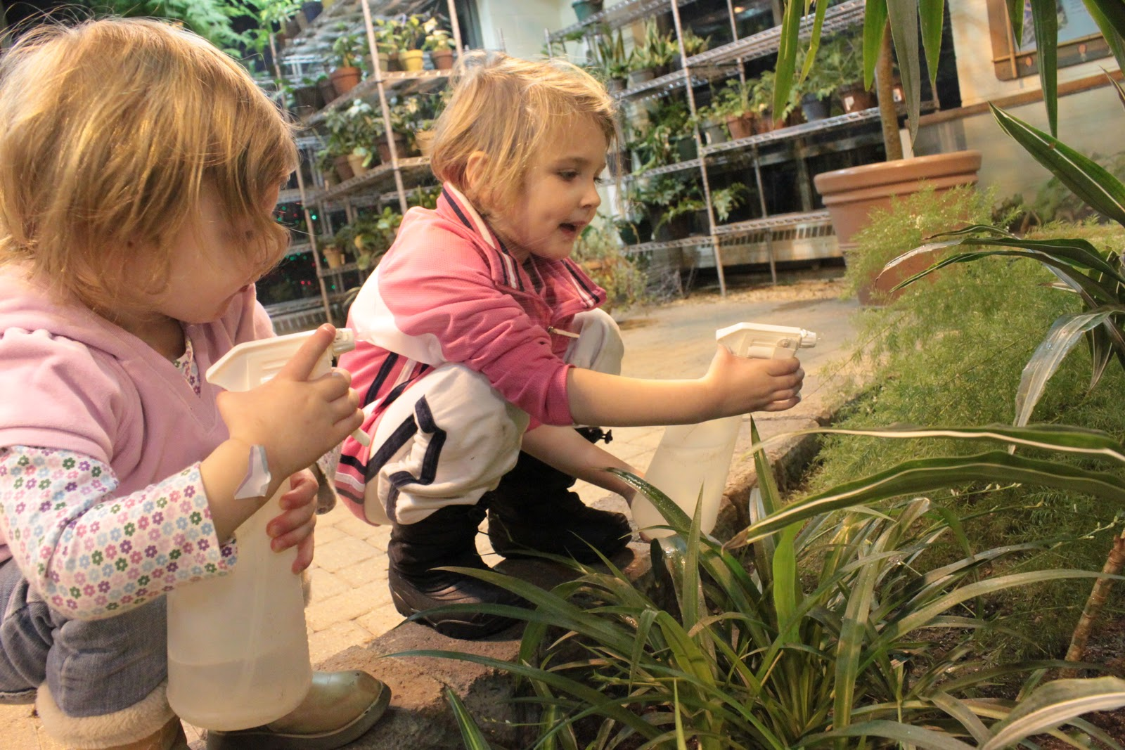 Hamill Family Play Zoo