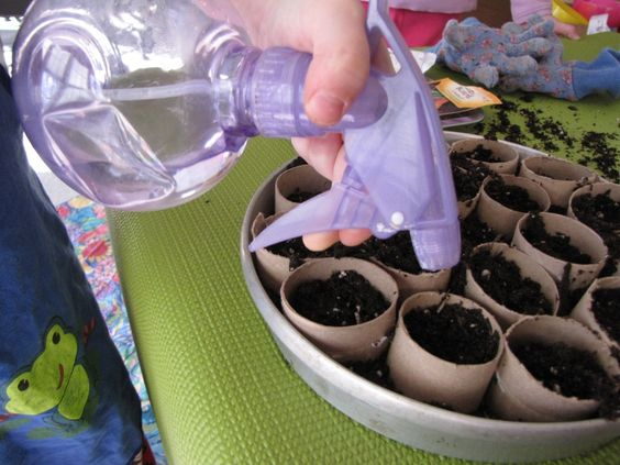 plant something.jpg
