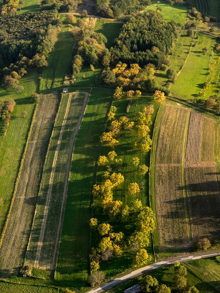Aerial view of my beloved Burgenland/Austria.