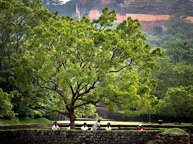 The colors of Sigiriya One of Sri Lanka's iconic places is Sigiriya - the Lion Rock. But before you get stunned by the gigantic rock you´ll fall in love with the colors and forms of the surrounding gardens and stone formations. #SriLanka # Sigiriya #LionR