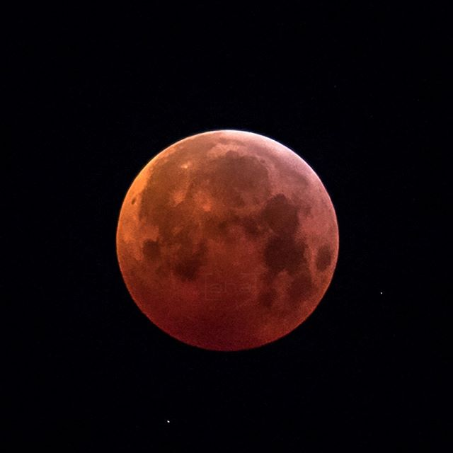 The rise and fall of the #BloodMoon from the 21. Jan. 2019 This image was taken @ 6:18 AM Location: #Wiesmath, Bucklige Welt, #Austria