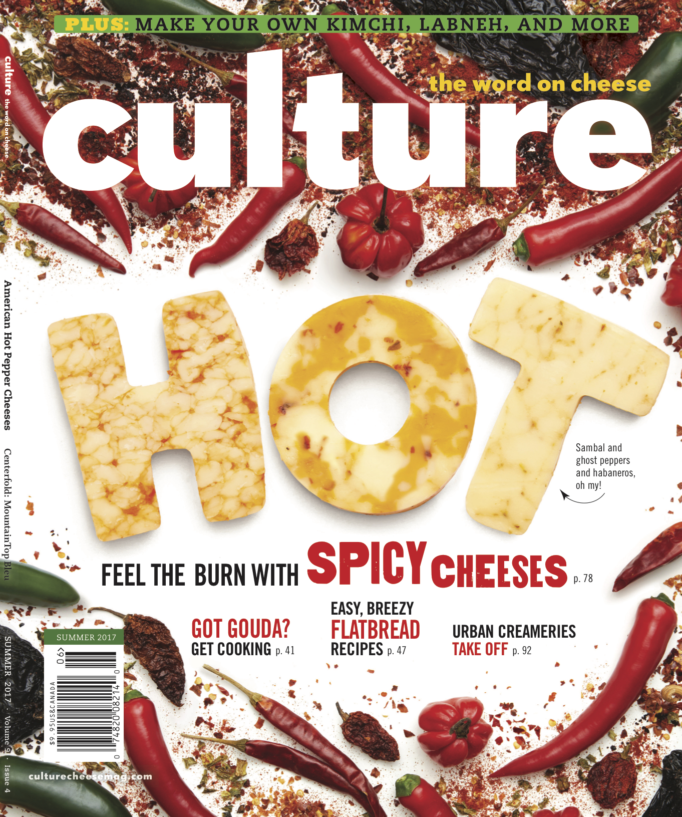 Culture_EviAbeler_Cover.jpg
