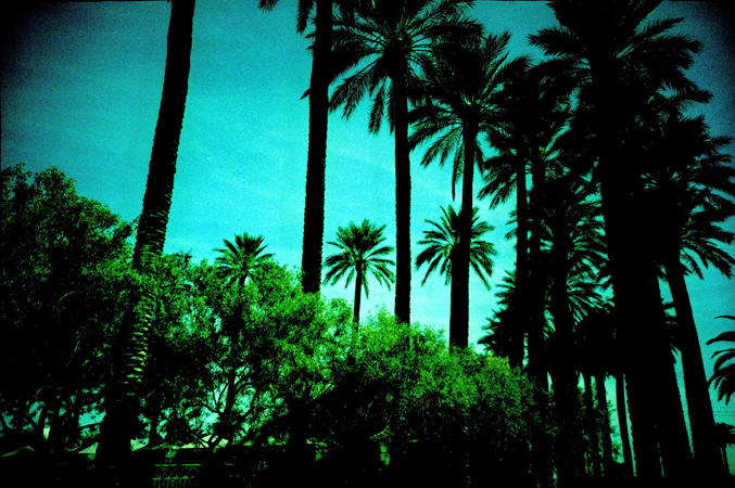 VegasLomo5_0026.jpg