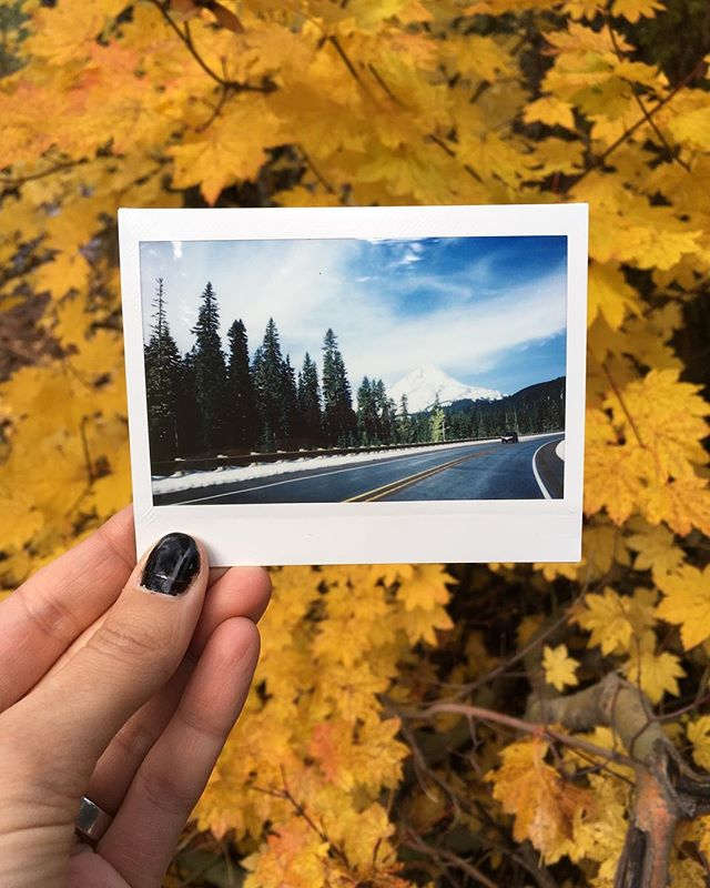 on the hunt for fall colors 🍁😍📷