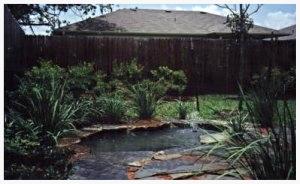 Austin_Texas_Landscape_Pond_Yard