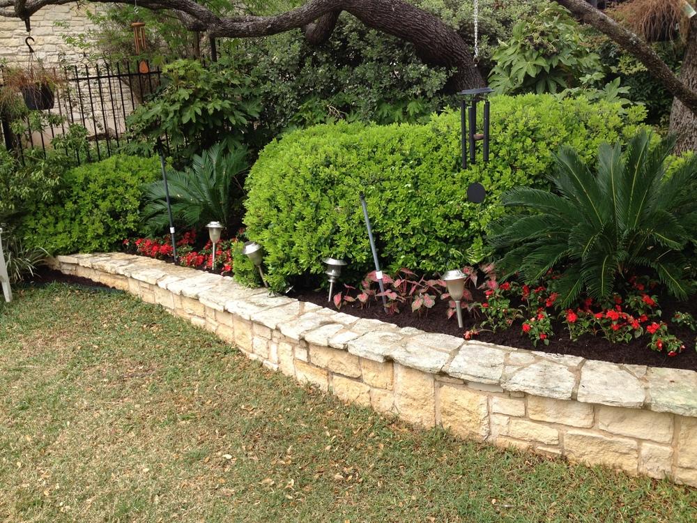 Perennials+and+Annuals+(2).jpg
