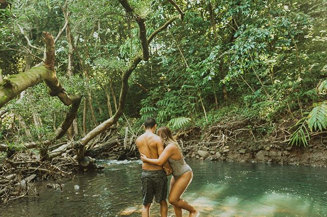 Two adventurous days with these cuties! Yesterday we met up at Iao Valley and hiked up a ridge and explored, then this morning this was my view in this amazing jungle ✨😍 . . . . . . . . . #mauiphotographer  #mauimaternityphotographer  #sunshinecoastelopement  #kauaiphotographer  #oahuphotographer  #mauiweddingphotographer  #hawaiiweddingphotographers  #mauicouplesphotographer  #mauicouple  #hanaleiwedding