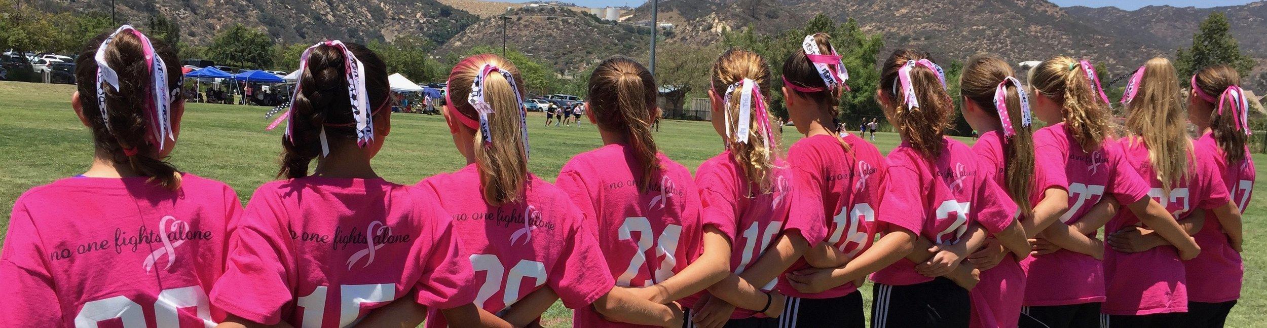 pink-hair-bows-in-line.jpg