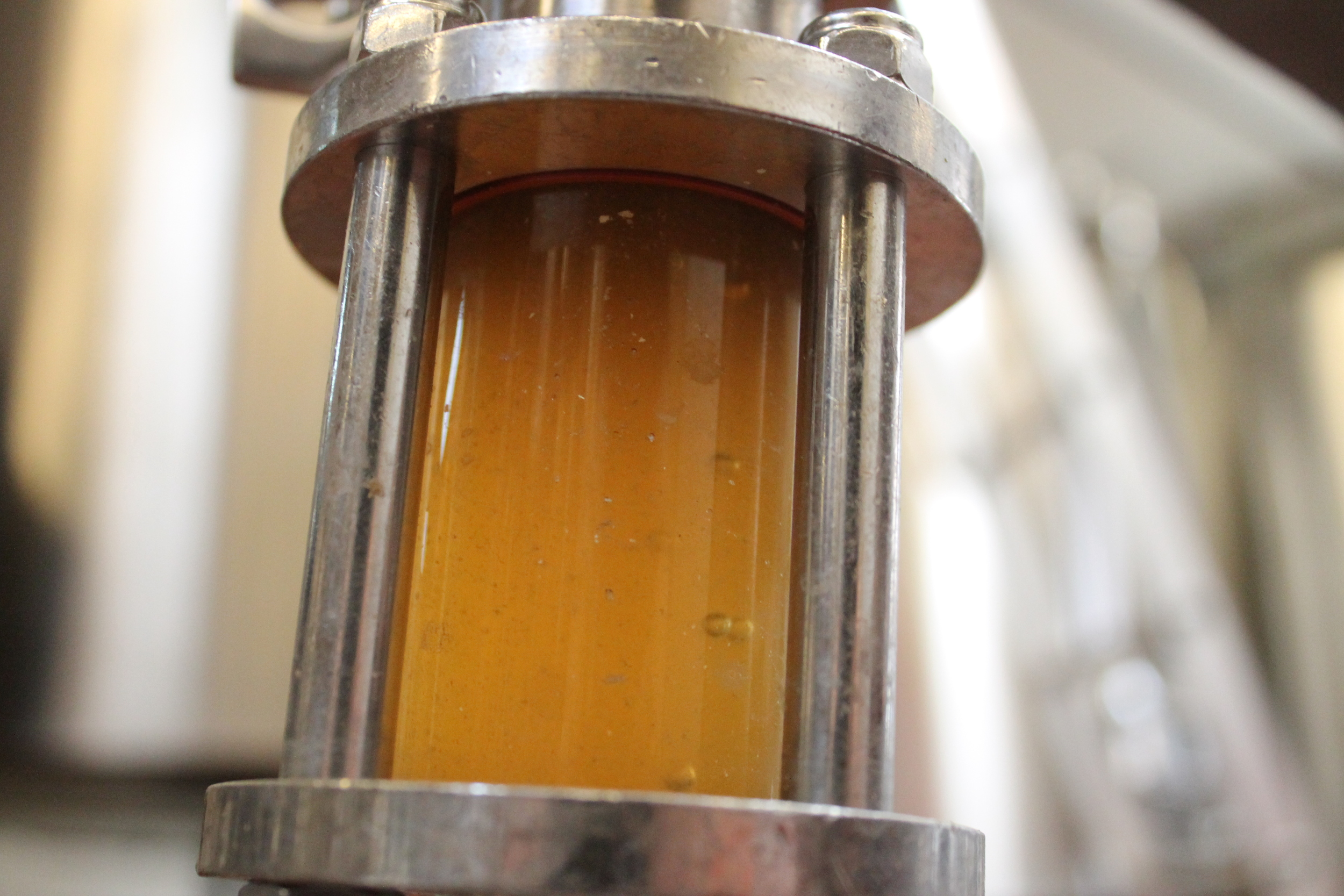 Wort going into the fermenter.